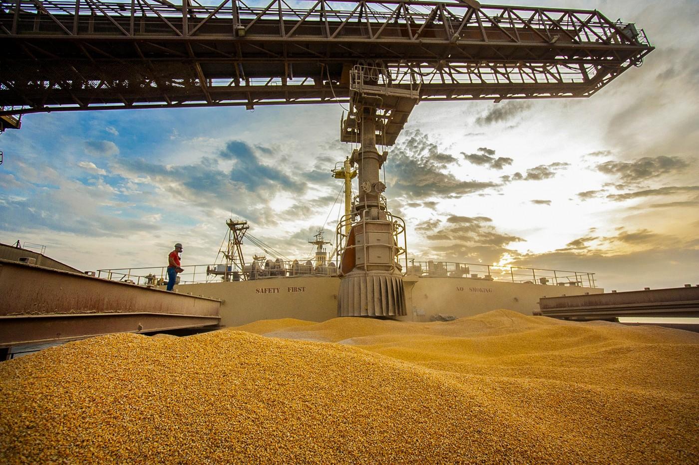puxadas pelo milho, exportações do agro atingem us$8,4 bilhoes em outubro